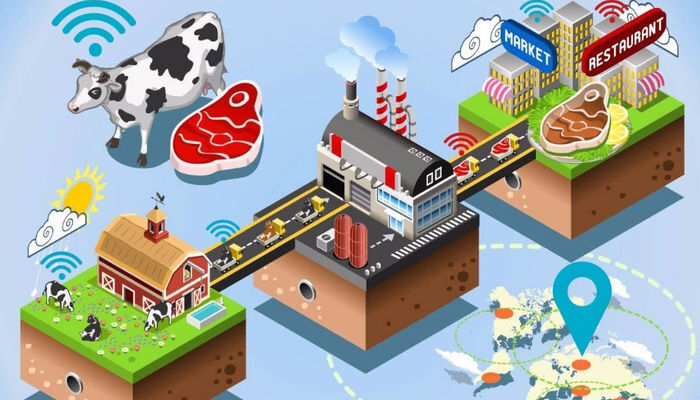 Big data: de impact in de agrofood keten